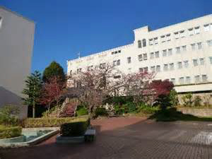 物件番号: 1123106703 MAYA-桜-ビレッジ  神戸市灘区箕岡通4丁目 1K マンション 画像23